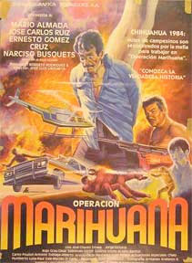 Operacion-marihuana