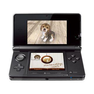 Nintendo3ds06