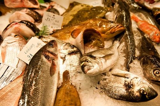 Pescado 5