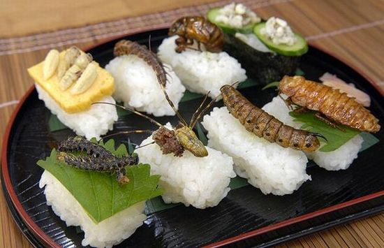 Sushi-insectos-1