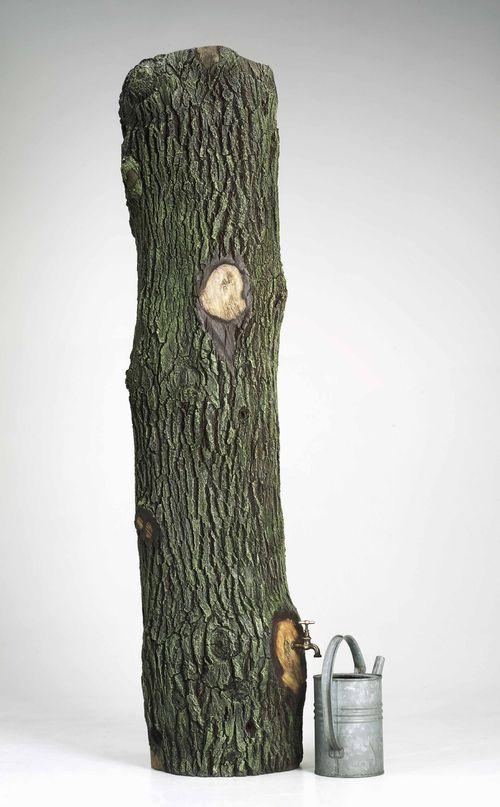 WeyersHans_Quercus Rain Tree