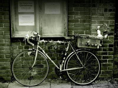 Kahane-tim-12-days-of-christmas-bicycle