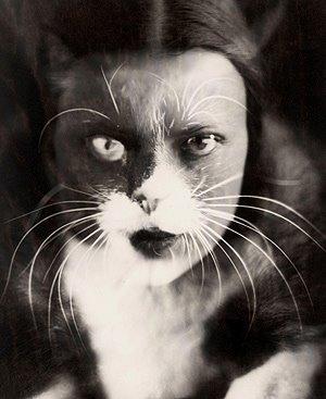 El gato, el animal menos dócil, convertido en mujer FOTO Efe