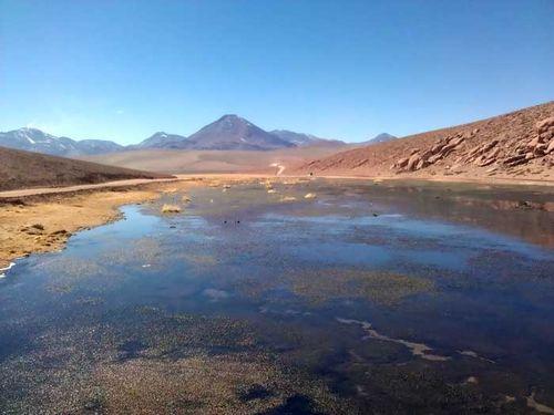 Cosas Atacama 4