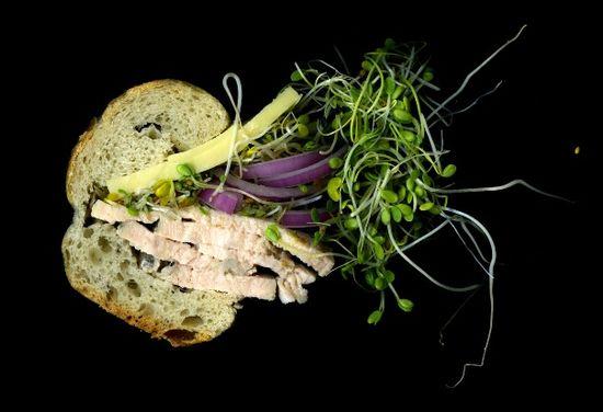 Scanwiches1