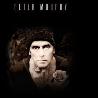 Petermurphy2