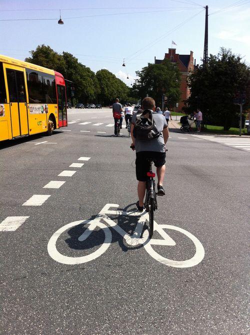 Un ciclista por las calles de Copenhague. P.L.