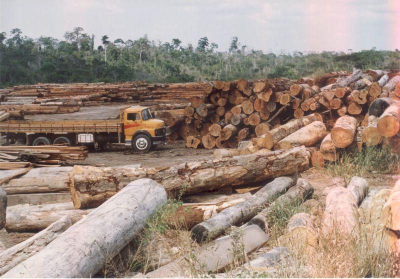 Desmatamento-na-amazonia2