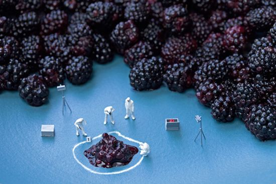 Blackberry C.S.I.