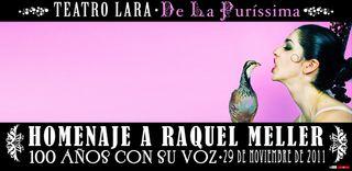 Web_lara