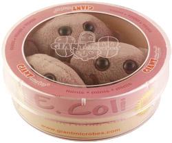 E-coli-petri