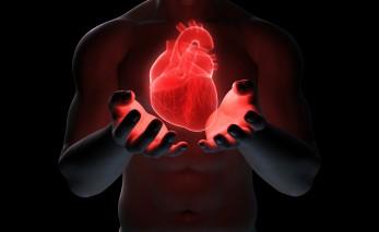 Cuando La Guerra Fría Ayudó A Conocer Mejor Al Corazón Humano