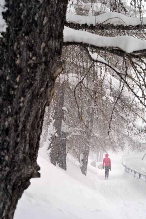 Nieve en Zermatt 13