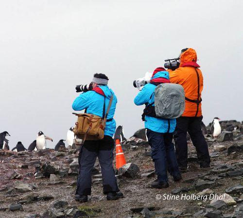 Turismo en la Antartida