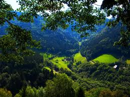 Floresta Negra en Alemania