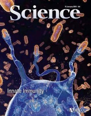 Revista Science
