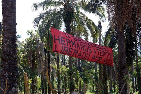 Asentamiento banner