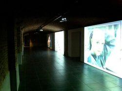 Les Transnumériques en las Galeries De La Reine de Bruselas