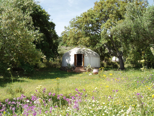 Afghani_Yurt_Meadow_in_May