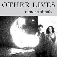 Other-lives-tamer-animals-album-cover