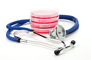 Células madre medicina