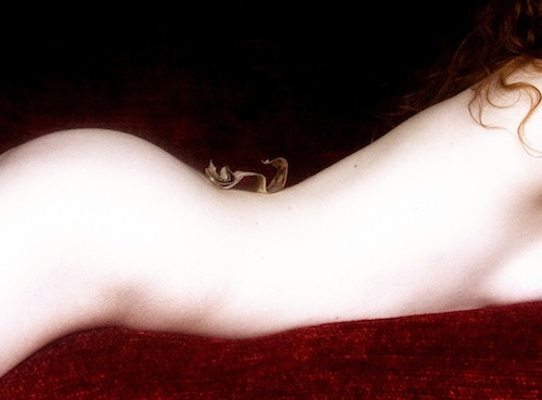 Venus O'Hara by Guy Mobery