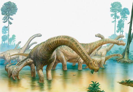 Sn-dinosaurs