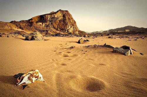 Desierto2