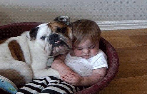 Bebé abrazado con un perro