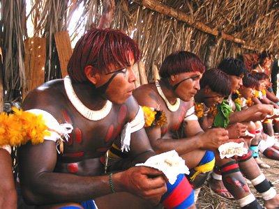 Indios brasileños (2)