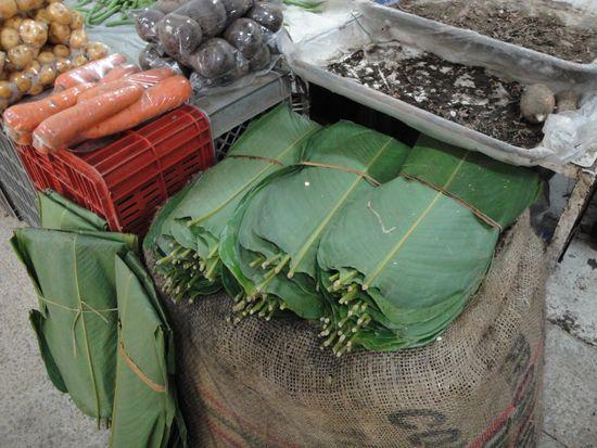 Hojas para la preparación de tamales