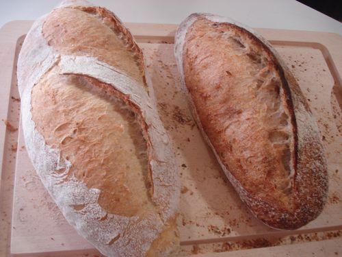 Barras elaboradas en la panadería efímera de San Sebastián