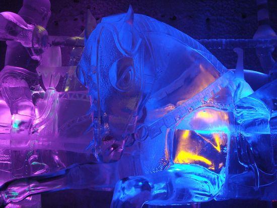 Jj horses heads  aurora ice