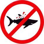 No pescar tiburón.