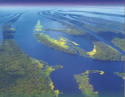 AmazonasEmbrapa(2)