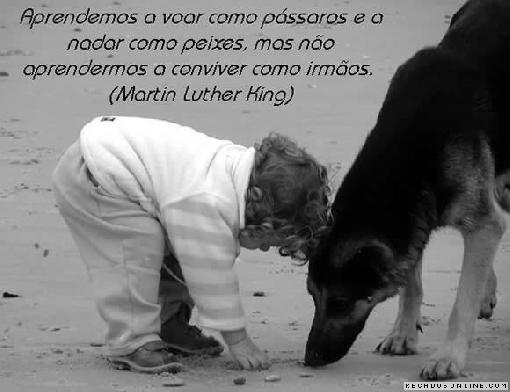Luther King (2)