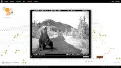 Bear71 de Jeremy Mendes y Leanne Allision