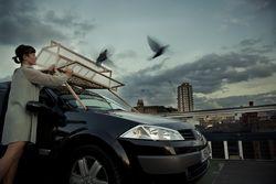 Pigeon d'Or y limpia cristales de los coches aparcados de Tuur Van Balen