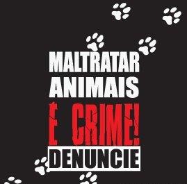 Maltratar animales