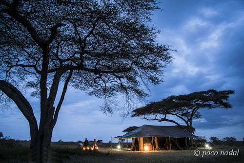Paisajes del Serengeti 4