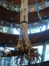 La instalación envolvente Tower of winds de Thomas Köner en la Rampa Espiral de CosmoCaixa