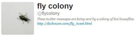 Fly Tweet - Perfil en Twitter. Una obra de David Bowen