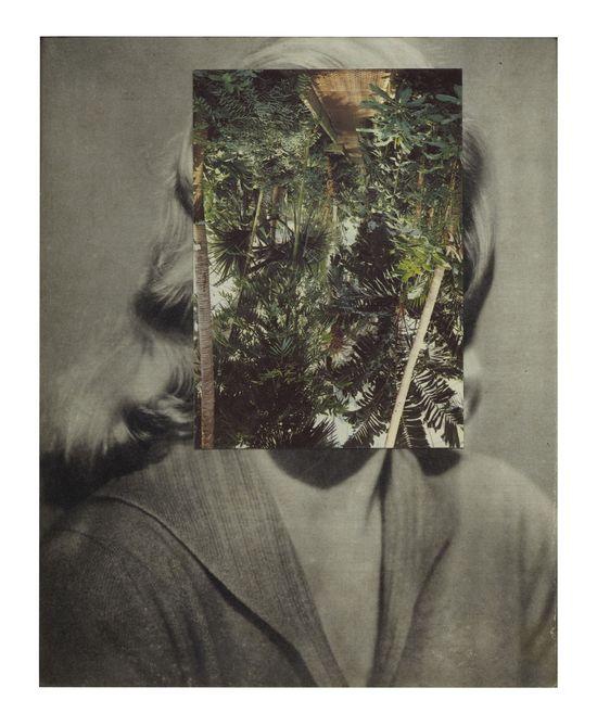 Ineditos.Carlos Fernandez Pello.Flores absimo parataxis