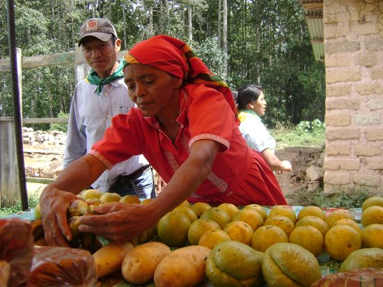 Miles de prácticas de economía solidaria ya operan en todo el mundo