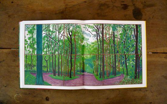 El bosque de Woldgate III, 20 y 21 de mayo de 2006
