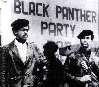 Panteras-negras