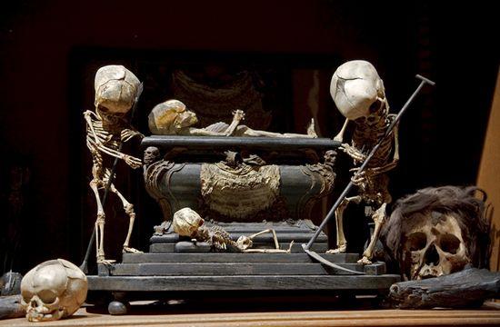 Secretmusem06morbid anatomy