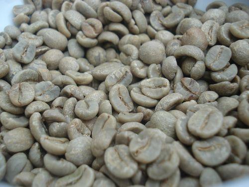 Granos de café arábica en verde, sin tostar