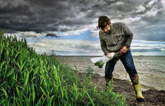 El chef del restaurante Noma de Copenhague René Redzepi recoge plantas para sus platos en la costa de Dragor a una hora de Copenhague Alfredo  Cáliz