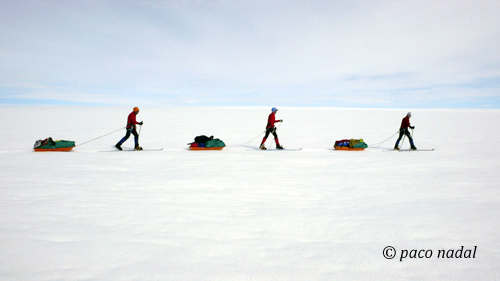 Groenlandia pulka